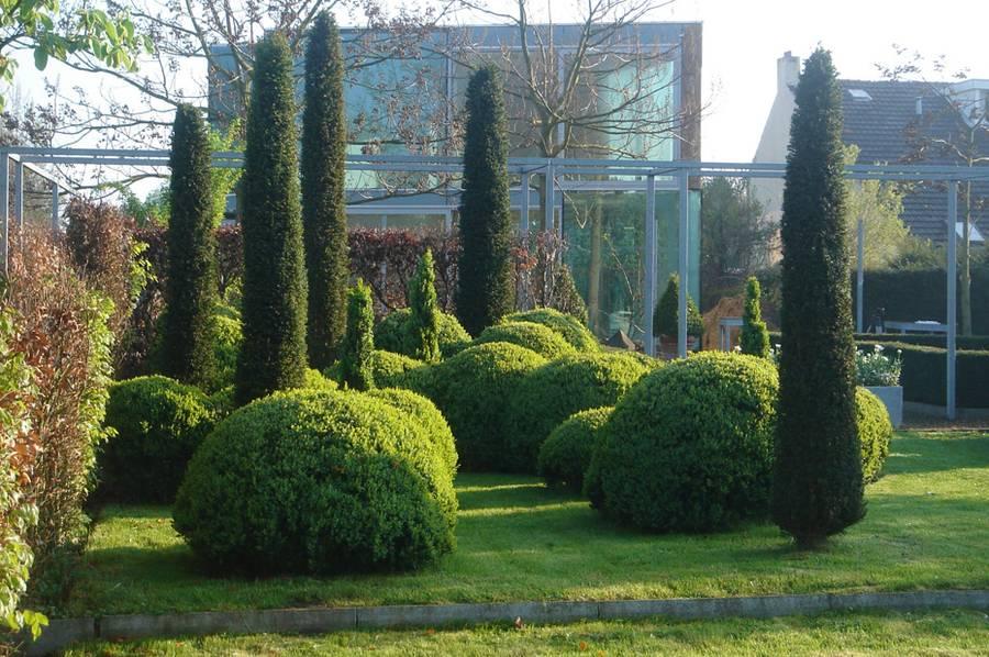 Gr ne skulpturen f r gro e und kleine g rten - Buchsbaum garten ...